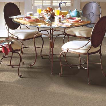 Horizon Carpet | Farmingdale, NY